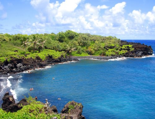 Visit Maui – Why Maui Should be on Your Bucket List